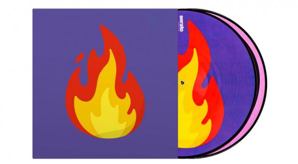 Vinyl timecode Serato Emoji picture Disc(Flame/records)