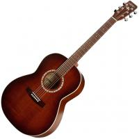 Folk Cedar Left EPM Quantum 1 - Antique burst